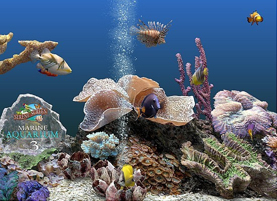 Marine Aquarium 3 Screensaver