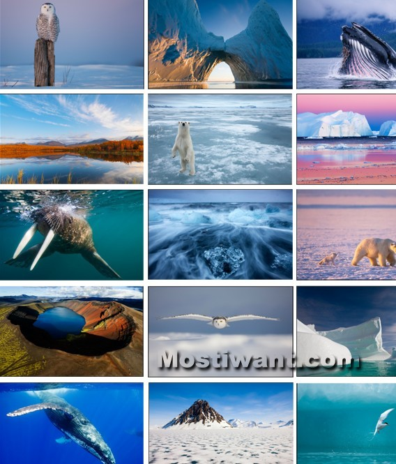 Download Arctic Windows 7 Theme Pack