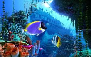 Coral Reef 3D Screensaver Software Full Version FREE Download