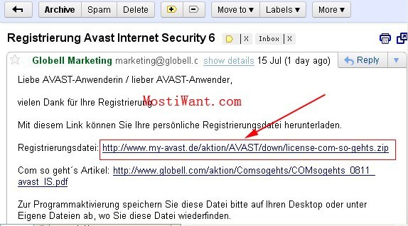 Avast Internet Security 6  License File