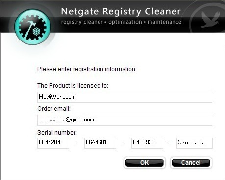 Register NETGATE Registry Cleaner with received Serial Number