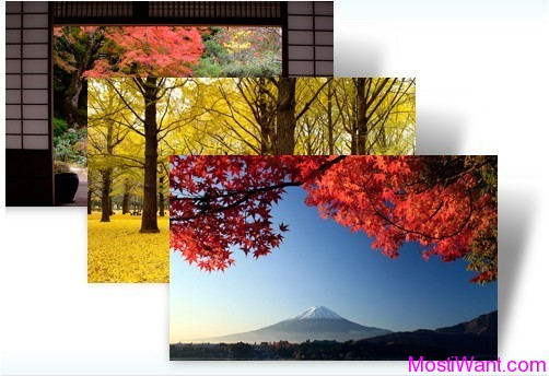 Autumn Color in Japan theme pack for Windows 7 & Windows 8