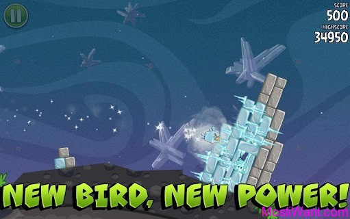 Angry Birds Space New Birds