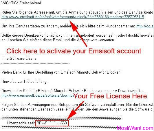 Emsisoft Anti-Malware Free License Serial Key