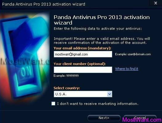 Panda Antivirus Pro 2013 Activation 2