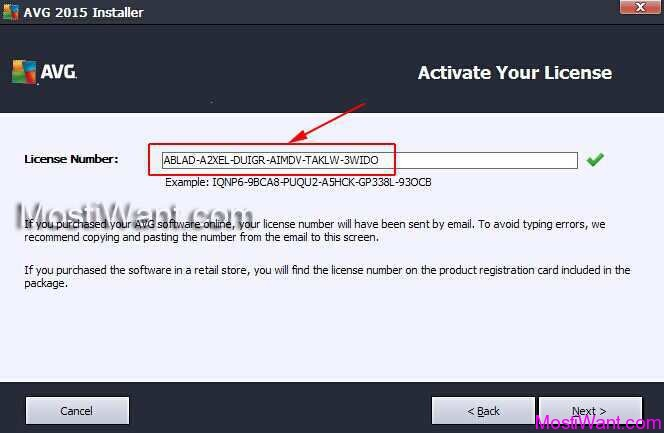 avg free licence number