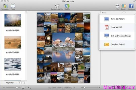 CollageIt 3 Pro for Mac