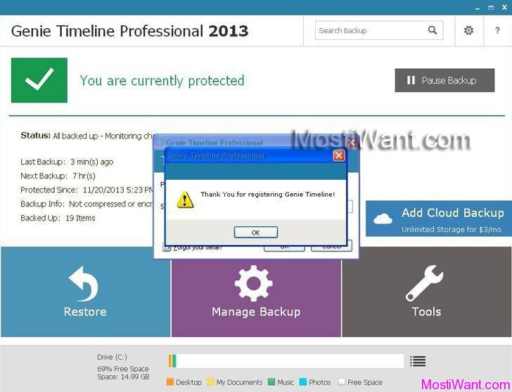 Genie Timeline Professional 2013 Full Version