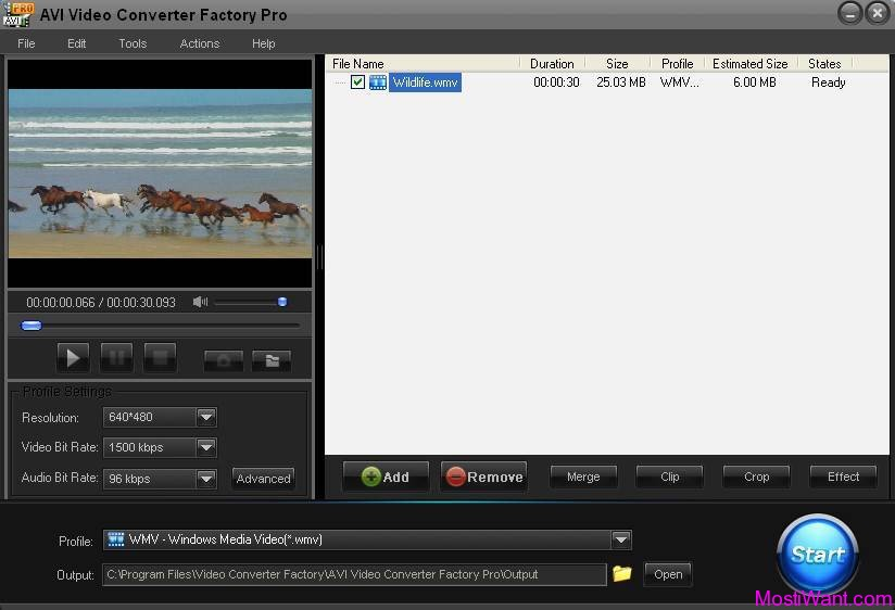 AVI Video Converter Factory Pro